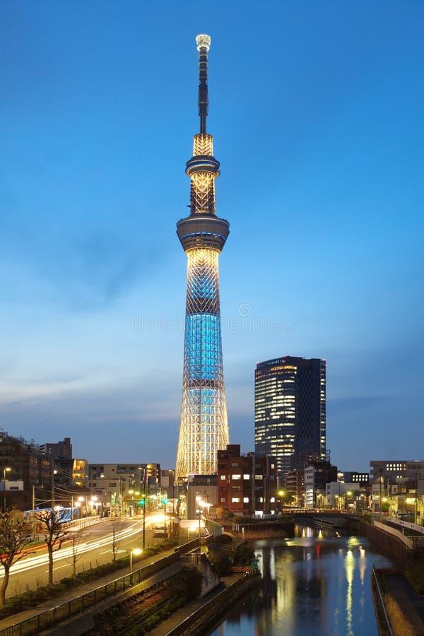 Tokyo-Himmel-Baum stockbilder