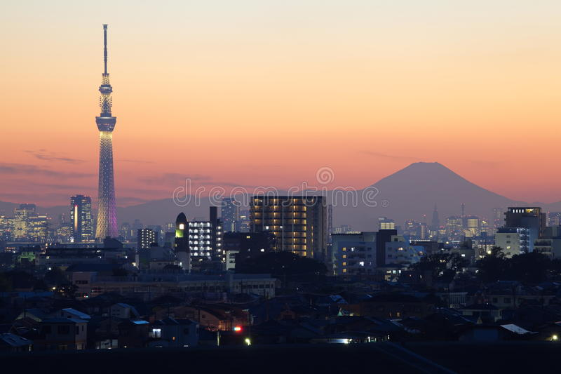 Tokyo-Himmel Baum und Fuji lizenzfreies stockbild