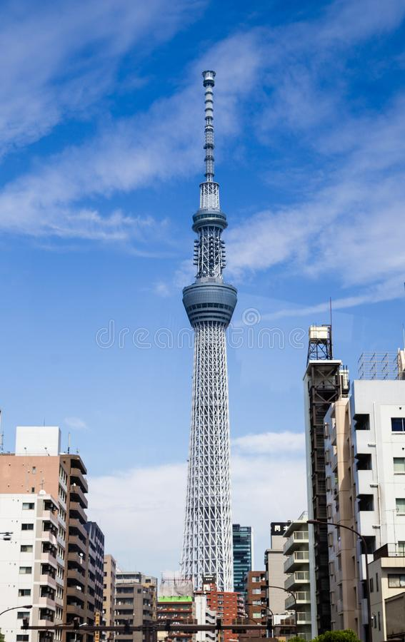 Tokyo-Himmelbaumstadtbild stockfoto