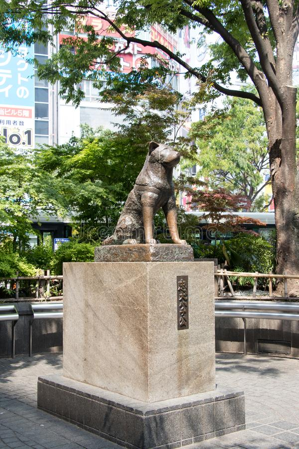 Tokyo, Japan - April 29, 2017 : Hachiko dog statue at Shibuya stock photos