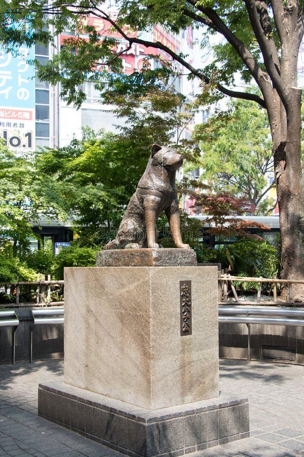 Tokyo, Japan - April 29, 2017: Het standbeeld van de Hachikohond in Shibuya stock foto's