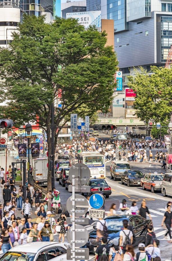 TOKYO JAPAN - Augusti 21 2018: Folkmassakorsning på övergångsstället av den korsa genomskärningen arkivbild