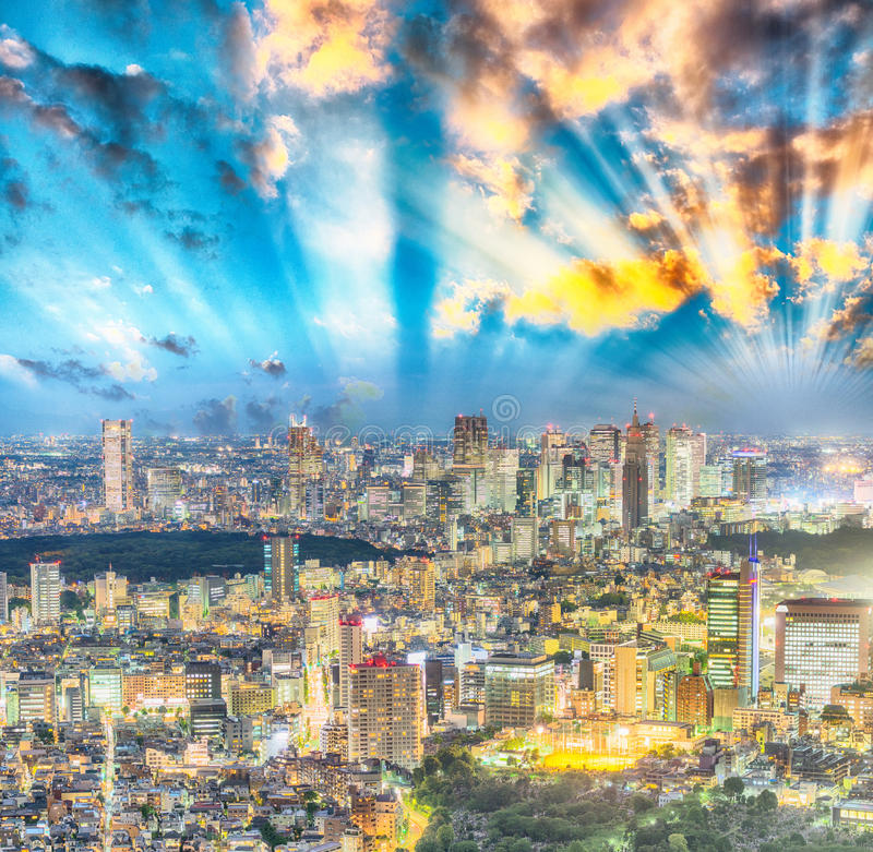Tokyo, Japan. Beautiful aerial view of city buildings at night royalty free stock image