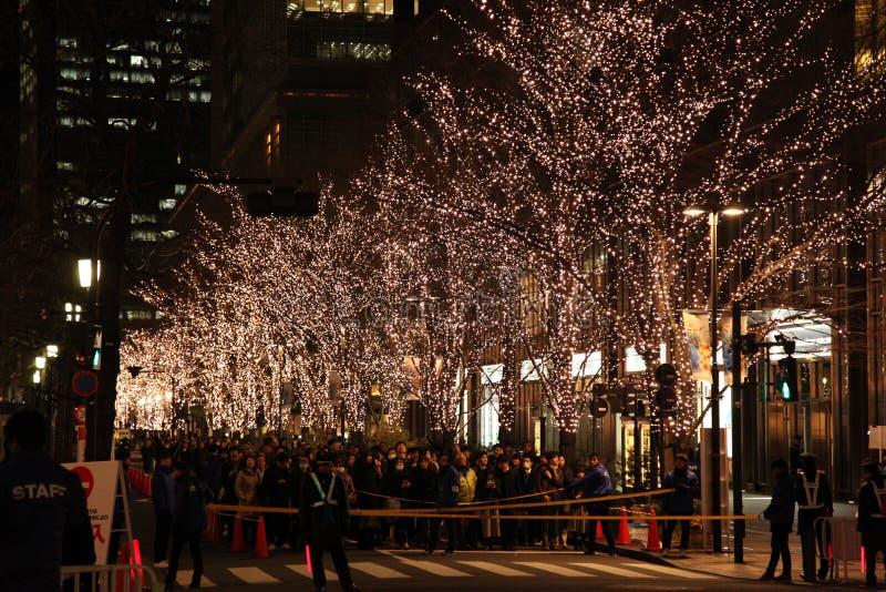 Tokyo, Japan - December 28, 2017: Japanese people and tourists waiting in line to enter Marunouchi Illumination 2017. At the main street, Marunouchi Nakadori stock photo