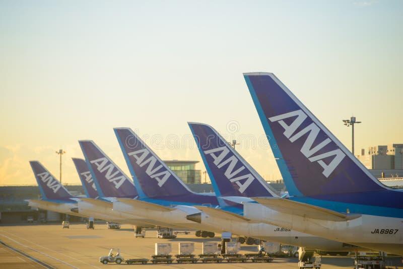 Tokyo Japan - Januari 16, 2017: Allt Nippon flygbolagflygplan som parkeras på flygplatsen för Tokyo ` s Haneda på soluppgång på J royaltyfri bild