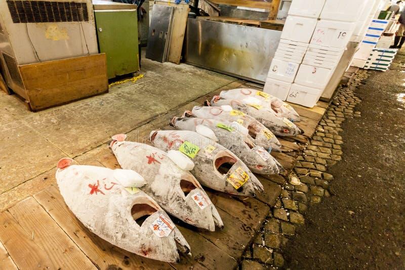 Tokyo Japan - Januari 15, 2010: Otta på den Tsukiji fiskmarknaden Tonfisk är klar för auktion arkivbild