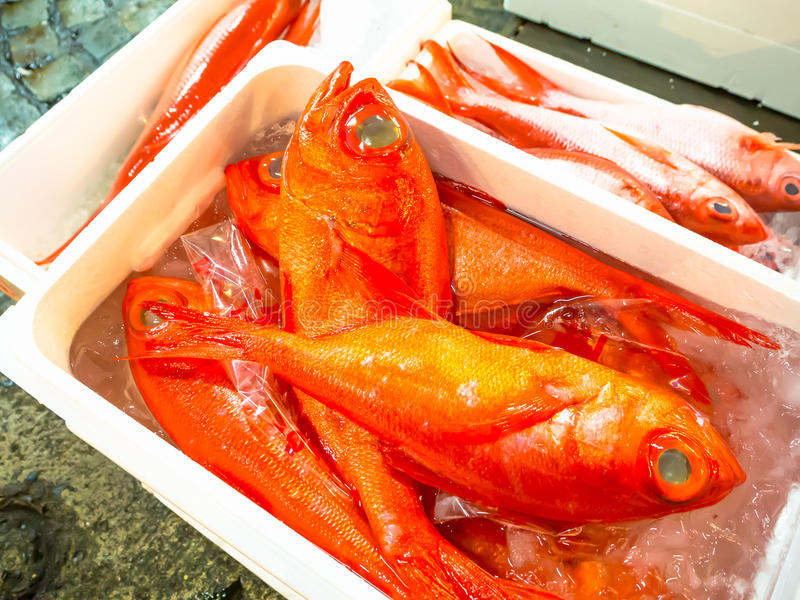 TOKYO, JAPAN JUNE 28 - 2017: Fish for sale inside of white boxes with water at the Fish Market Tsukiji wholesale in. Tokyo Japan, Tsukiji Market is the biggest royalty free stock photography