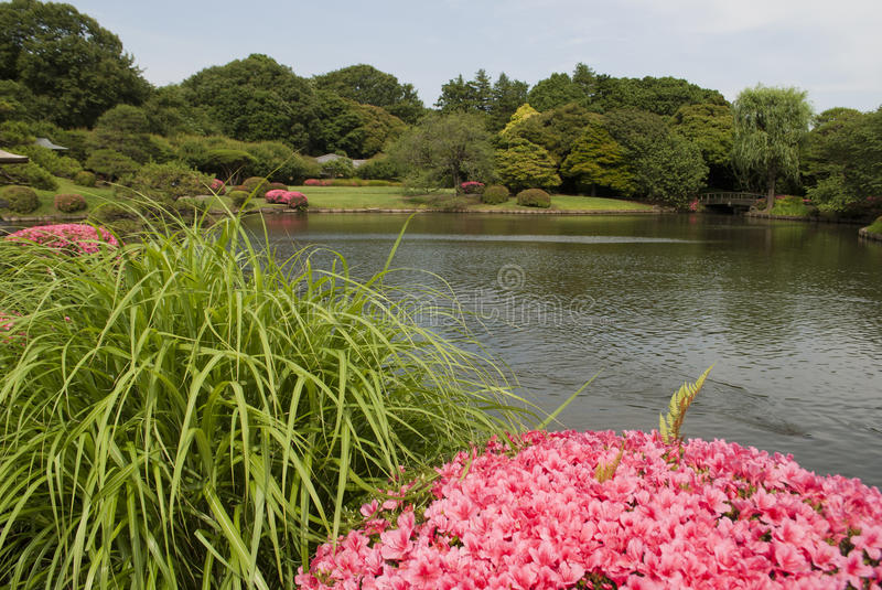 Tokyo, Japan, june 07, 2012: shinjuku gyoen national garden. The shinjuku gyoen garden is one of the most beautiful national gardens in Japan and is located in royalty free stock images