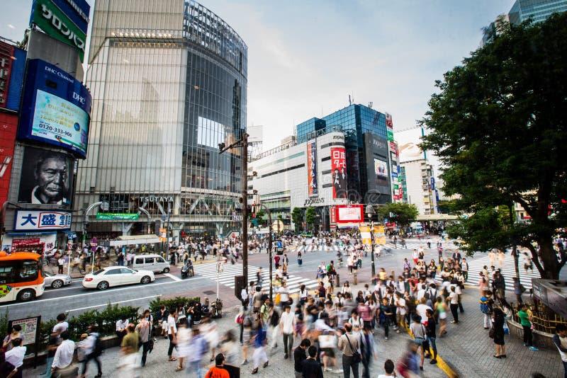 Tokyo Japan - Maj 28: Gångarekors på den Shibuya korsningen på arkivfoto