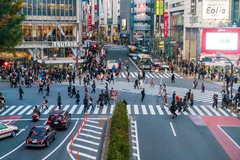 Tokyo, Japan, Nov 17, 2016: Shibuya Crossing Of City street with stock image