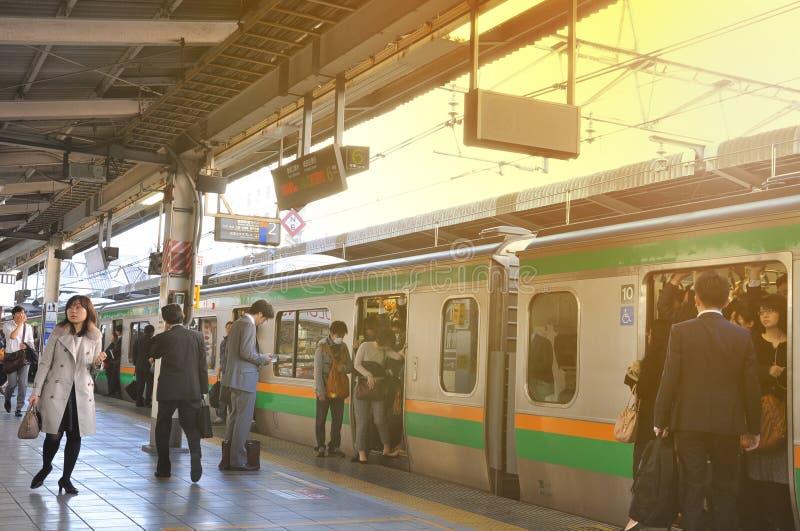 Tokyo, Japan: Am 13. November 2014 - die Menge des Leutereisens stockfoto