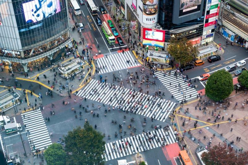 Tokyo Japan - November 08 2017: Flyg- sikt av gångare som går över med fullsatt trafik på den Shibuya korsningen royaltyfria foton