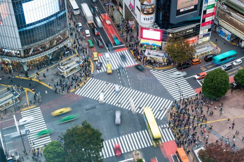 Tokyo Japan - November 08 2017: Flyg- sikt av gångare som går över med fullsatt trafik på den Shibuya korsningen royaltyfri foto