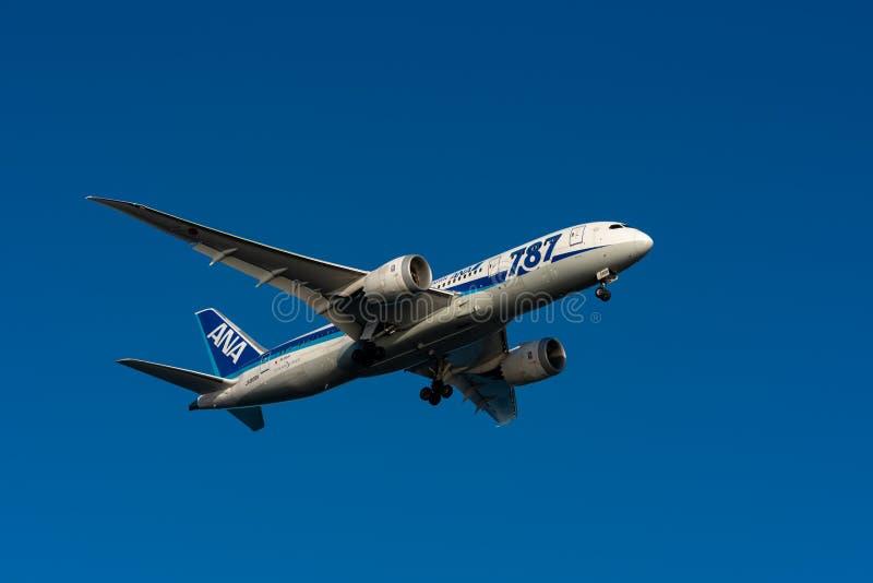 ANA Boeing 787-8 Dreamliner landing stock photo