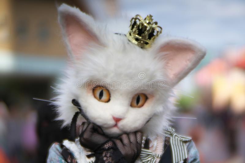 Soft FocusA special catty costume for Halloween festival in Tokyo royalty free stock photos