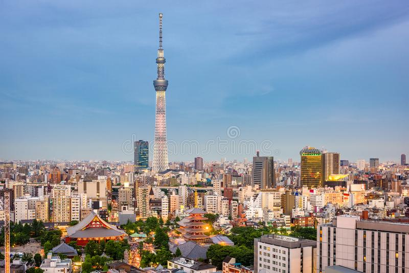 Tokyo, Japan Skyline royalty free stock images