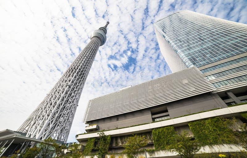 TOKYO, JAPON - 5 OCTOBRE 2017 : Tokyo Skytree chez Sumida avec la SK bleue images libres de droits