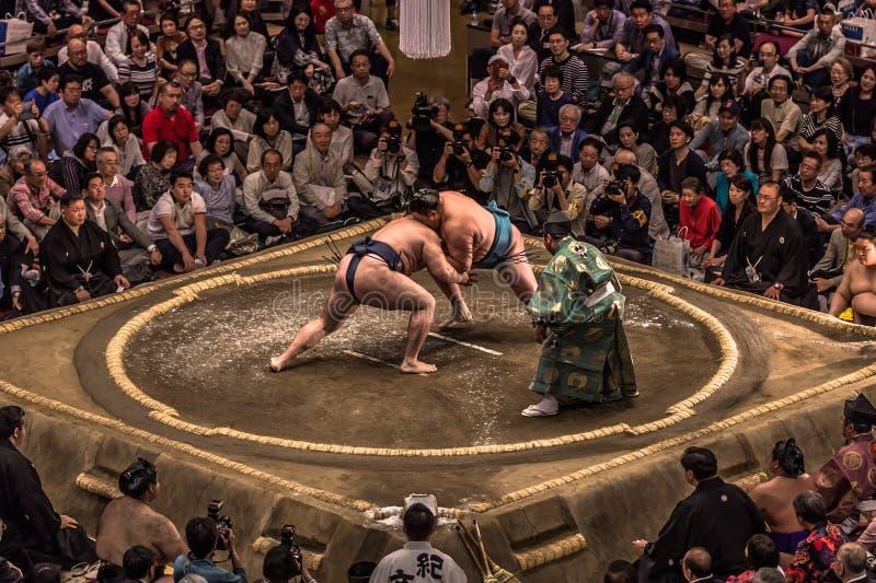 prøv sumo gratis 2019