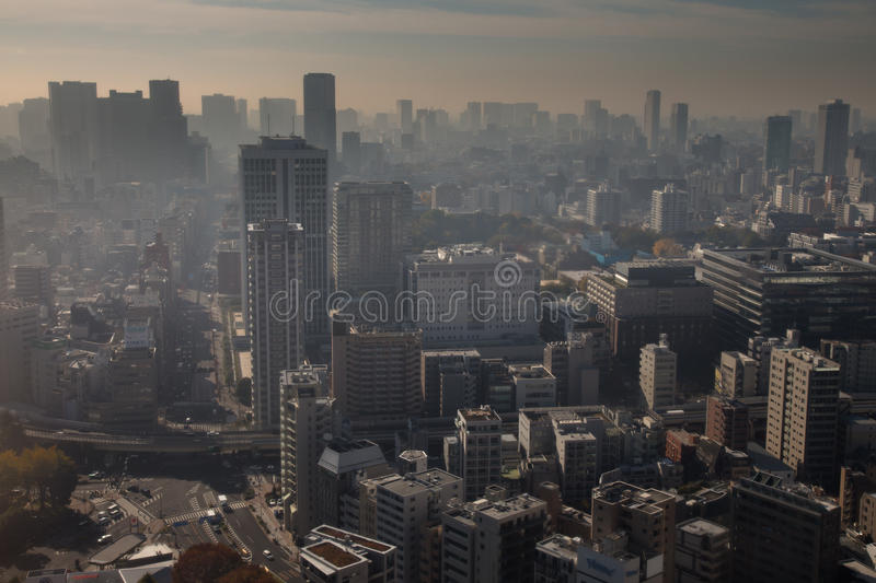 Tokyo Metro. The massive Tokyo Metropolis as viewed from Tokyo Tower royalty free stock images