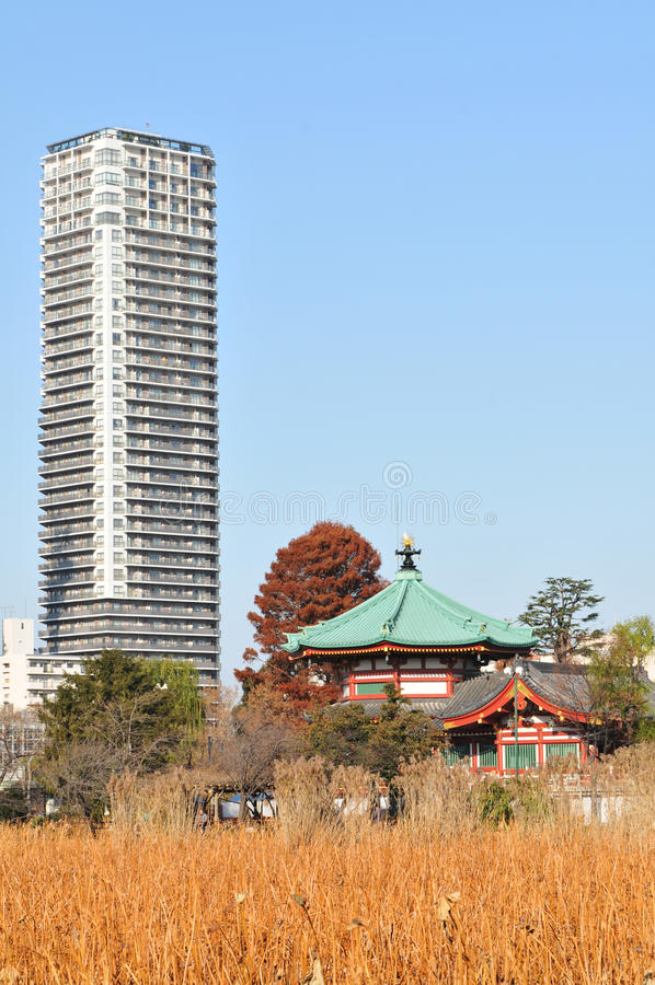 Tokyo between modernism and tradition royalty free stock photo