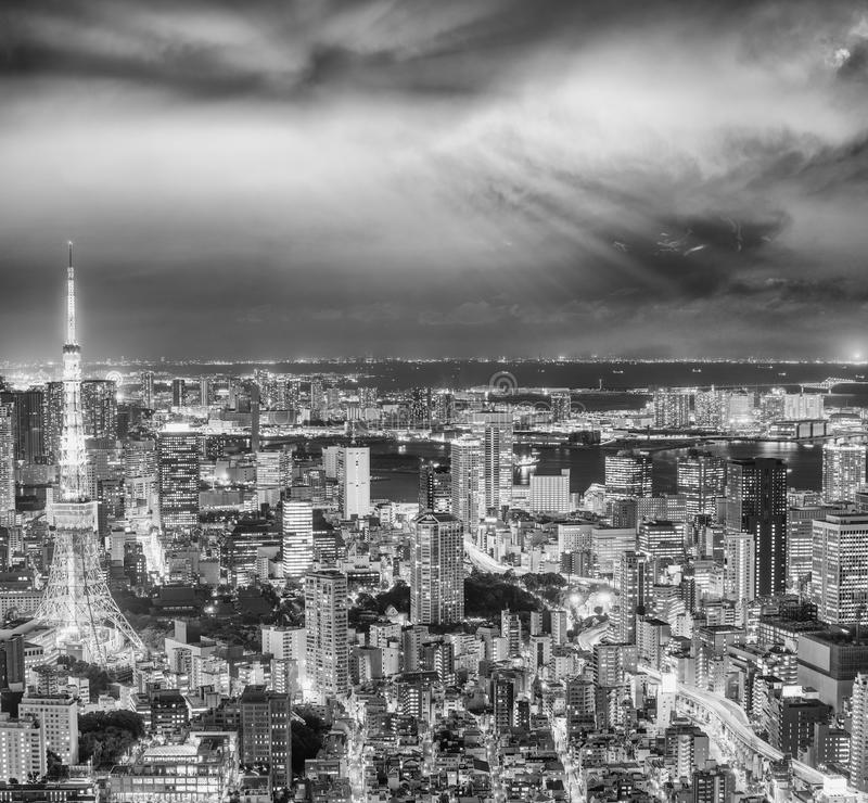 Tokyo night skyline with Tokyo Tower lights royalty free stock images