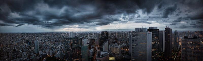 Tokyo panorama royaltyfri foto