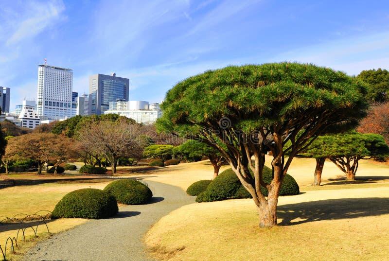Tokyo park stock photography
