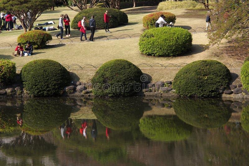 Tokyo Shinjuku Gyoen National Garden stock images