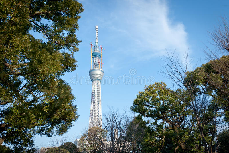 Download Tokyo Sky Tree stock image. Image of tree, broadcast - 18638453