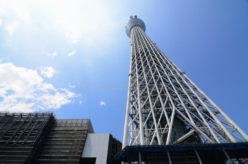 Download Tokyo Sky Tree stock photo. Image of urban, tokyo, japan - 21094748