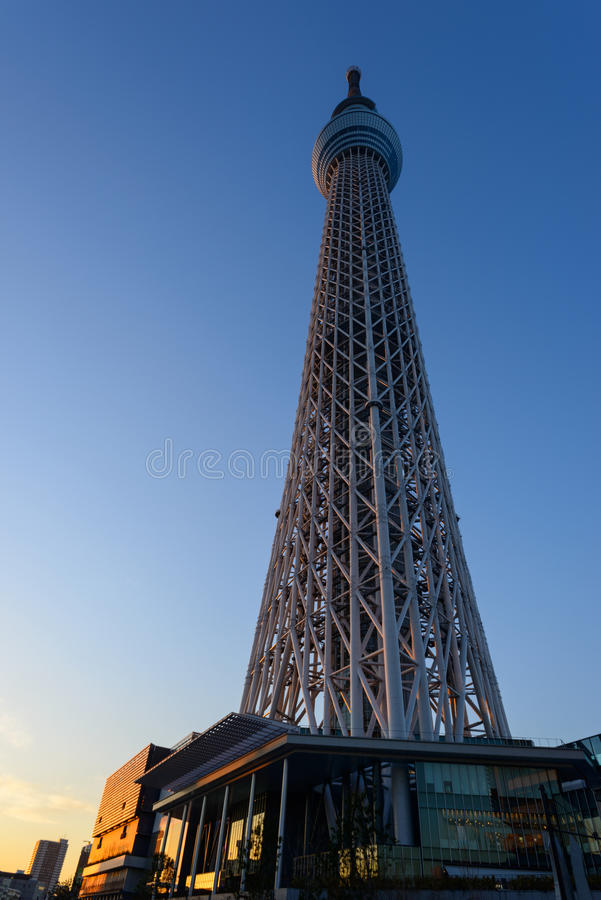 Download Tokyo Sky Tree at dusk stock photo. Image of scenery - 39509022
