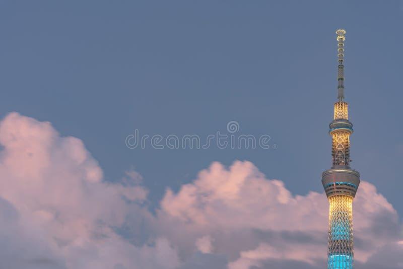 Tokyo Skytree, det högsta tornet i Japan med bakgrund för blå himmel arkivbild