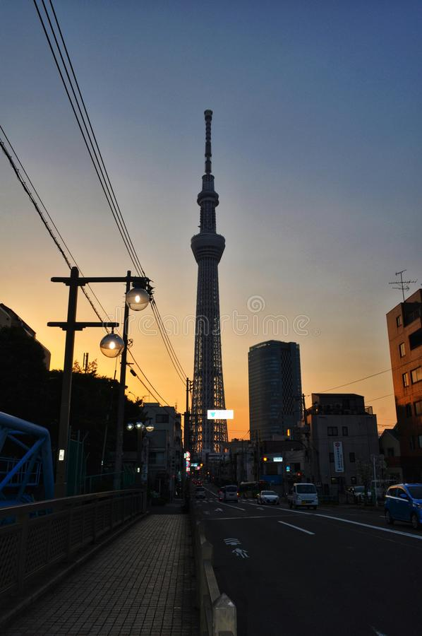 Tokyo SkyTree met zonsondergang stock foto's