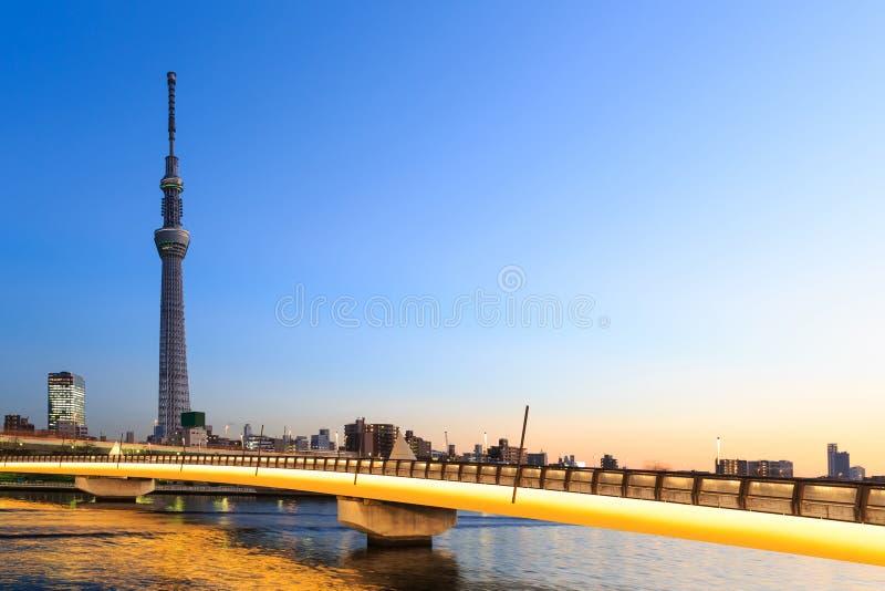 Tokyo-skytree und -brücke in der Dämmerung stockbild