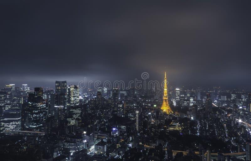 Tokyo Skyview lizenzfreie stockfotos