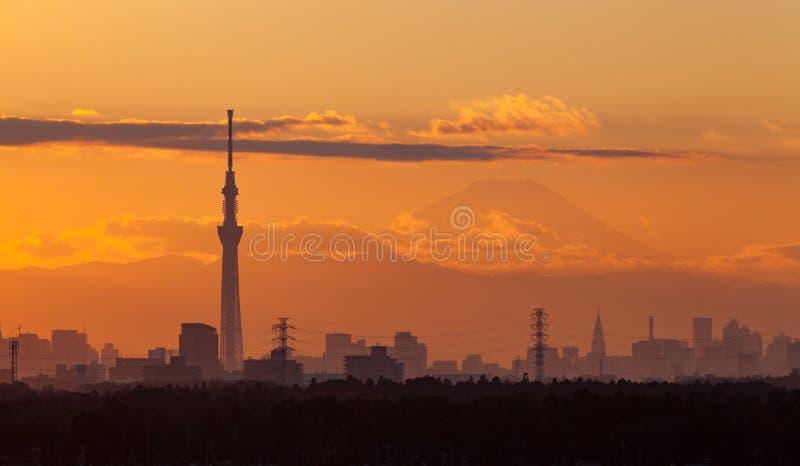Tokyo-Stadtansicht mit mt fuji lizenzfreies stockfoto