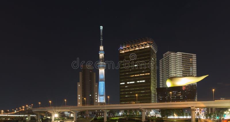 Tokyo-Stadtskyline mit Skytree-Turm nachts lizenzfreie stockfotos
