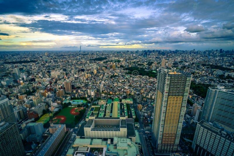 Tokyo tät cityscape under solnedgång royaltyfri fotografi