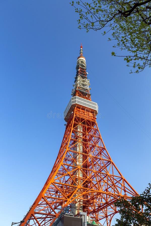 Download Tokyo tower stock image. Image of modern, orange, landmark - 32807827
