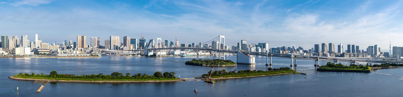 Tokyo Tower Rainbow bridge panorama stock photography