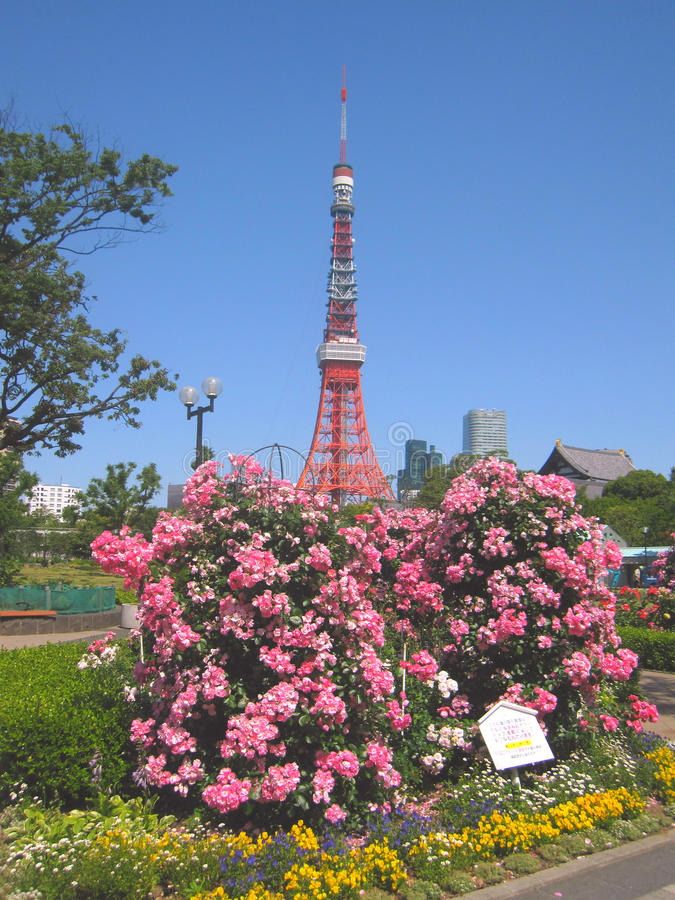 Tokyo Towers in Japan royalty free stock image