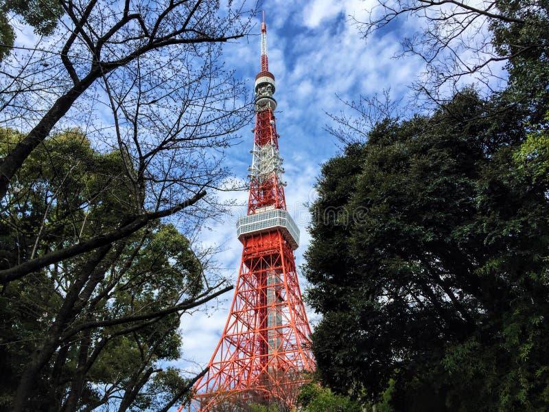 Tokyo-Turmauftauchen lizenzfreie stockfotos