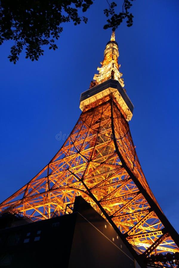 tokyo wierza obraz royalty free
