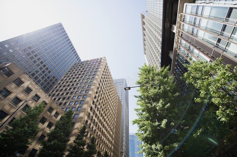 Tokyo-Wolkenkratzer stockbild