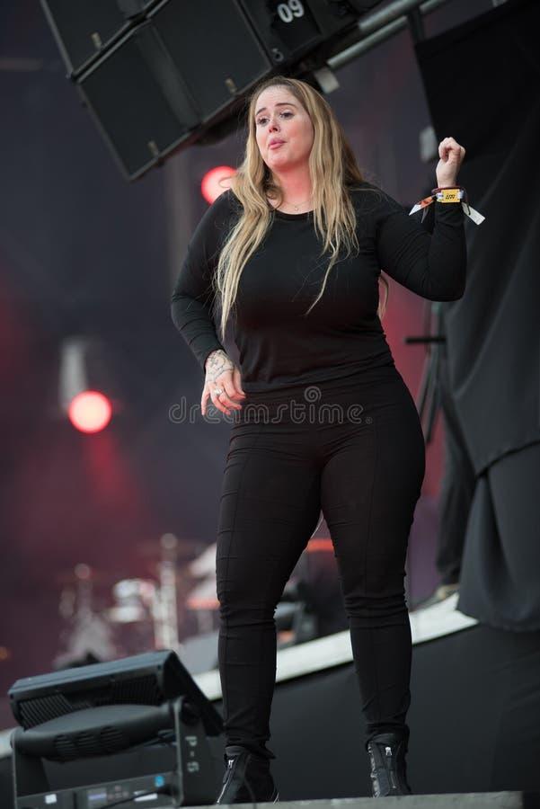 Tolkare för teckenspråk på konserten royaltyfria foton