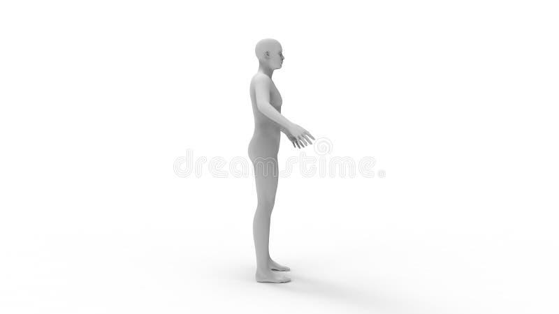 tolkning 3d av en mänsklig modell som isoleras i vit bakgrund royaltyfri illustrationer
