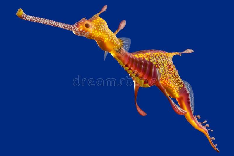 tolkning 3d av en Weedy seadragon, havvarelsen på den Australien och Tasmanien ön som isoleras på blå bakgrund med urklippet royaltyfri illustrationer