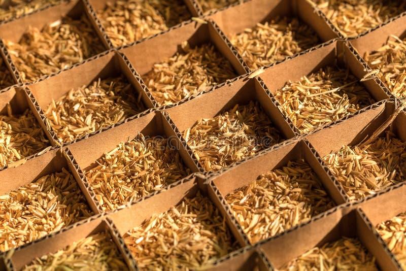 Tolo da caixa de cartão da palha do trigo nas pilhas foto de stock royalty free