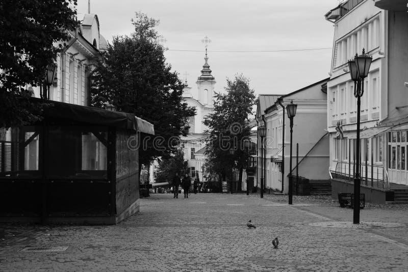 Tolstoy街有圣洁复活Rynkovaya教会,维帖布斯克,白俄罗斯看法  库存照片