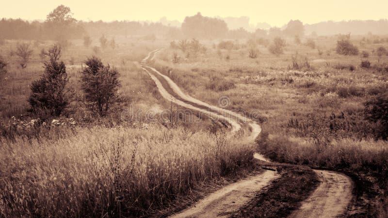 Tom bygdväg till och med fält med dimma och trädet i avståndet royaltyfri bild